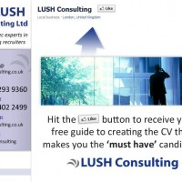 Lush Consulting Facebook Design