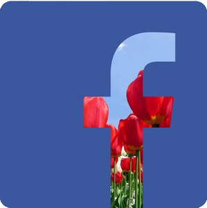 Facebook Logo with flowers