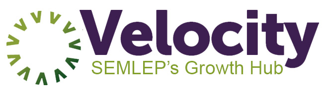 Velocity Business Support Grant